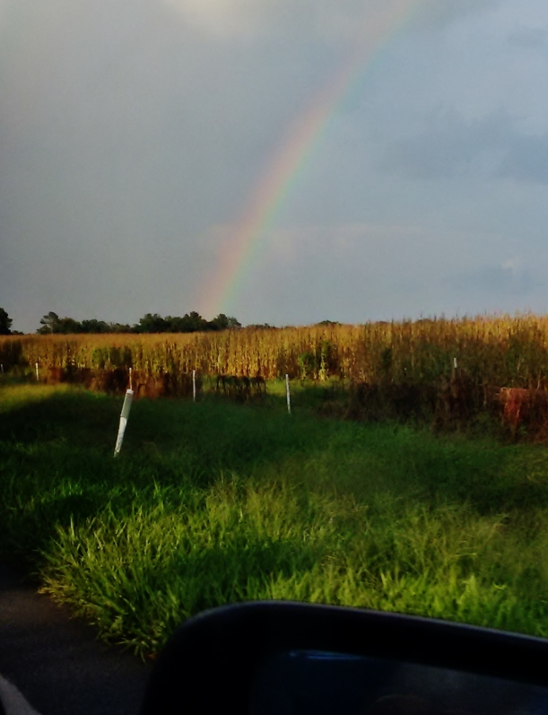 Rainbow that was present for almost an hour
